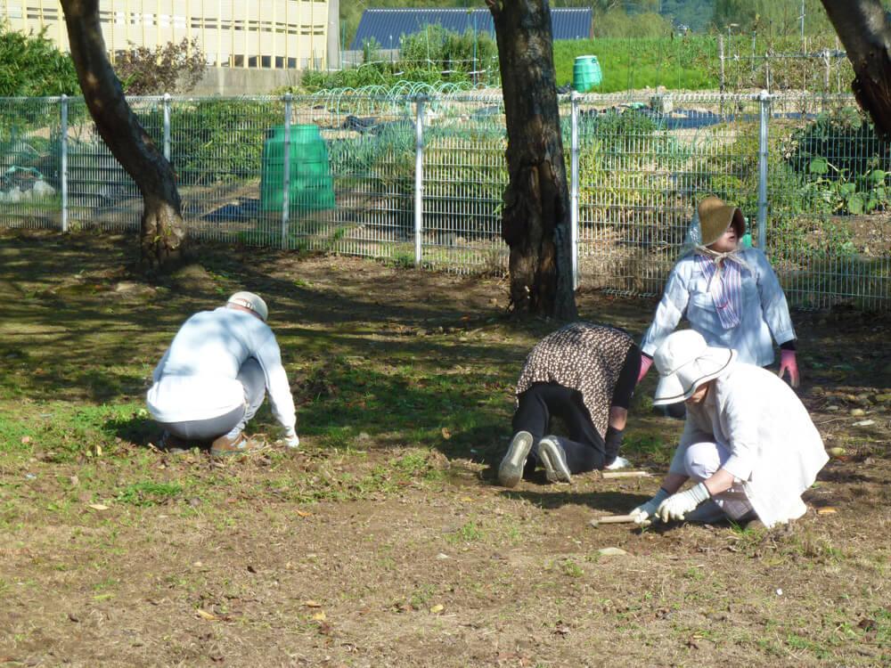 育松園での社会貢献活動の様子